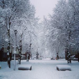 Ottawa Winters